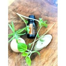Frankincense- kadidlo esenciálny olej